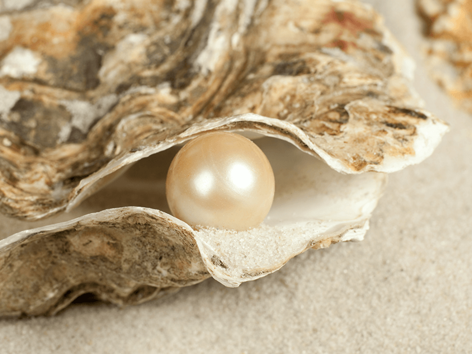 What is a Pearl Gemstone?