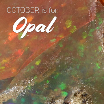 October is for Opal